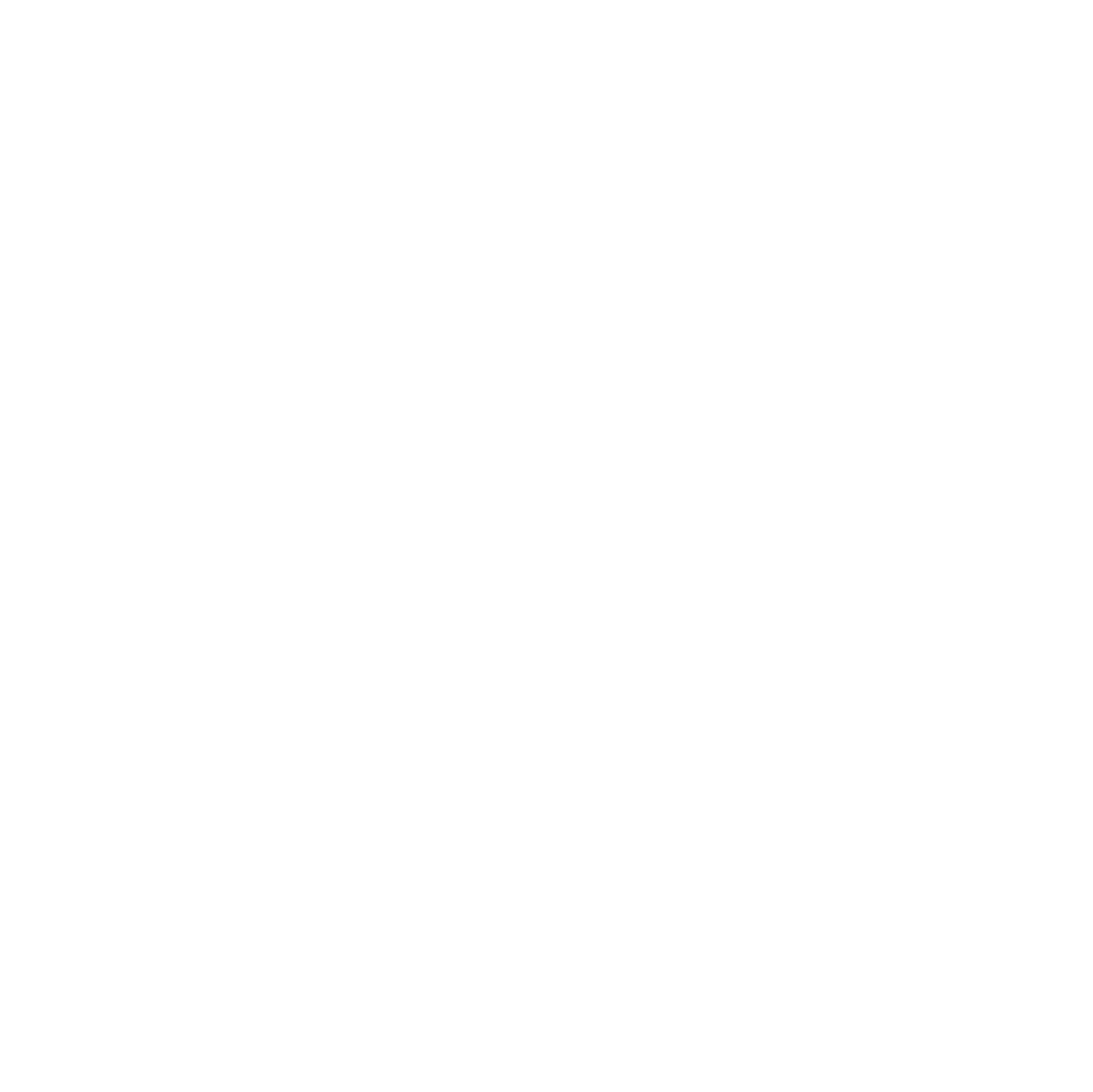 Logo Festival blanc